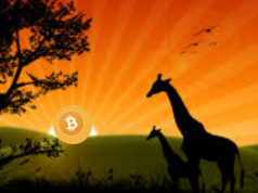 Bitcoin Peer to Peer Trading In Africa